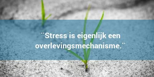 Stress is een overlevingsmechanisme