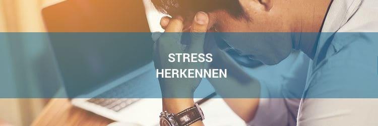Leer stress herkennen