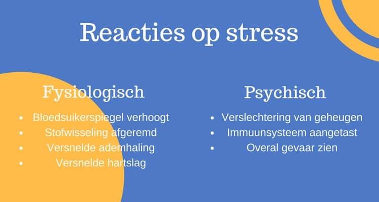 Fysiologische en psychische reacties op stress