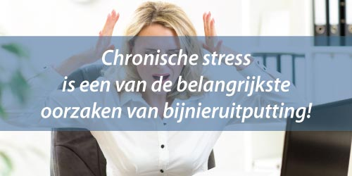 Alles over bijnieruitputting en stress